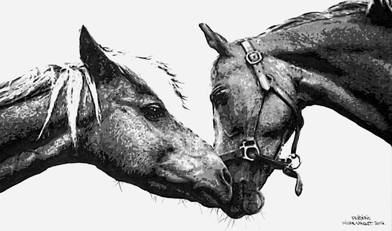 portrait sur mesure de chevaux