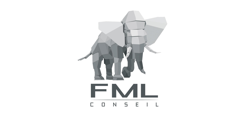 logo de la société fml conseil