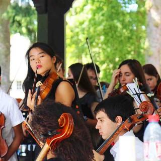 violonistes pendant l'expositions le lys chantilly