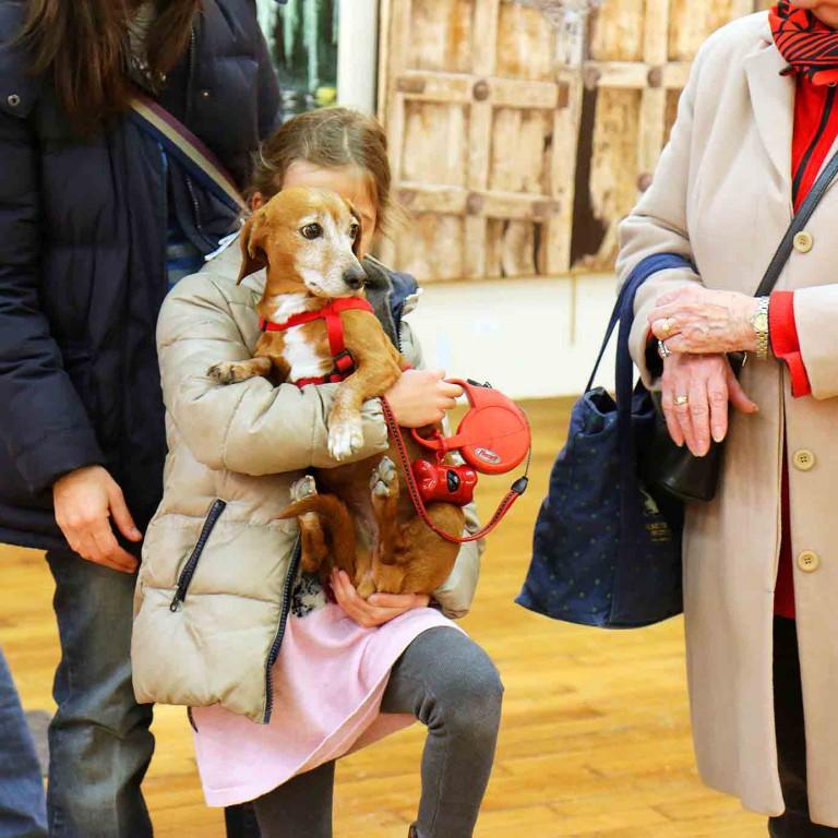 Petite fille avec un chien pendant l'expositions du festival de gouvieux
