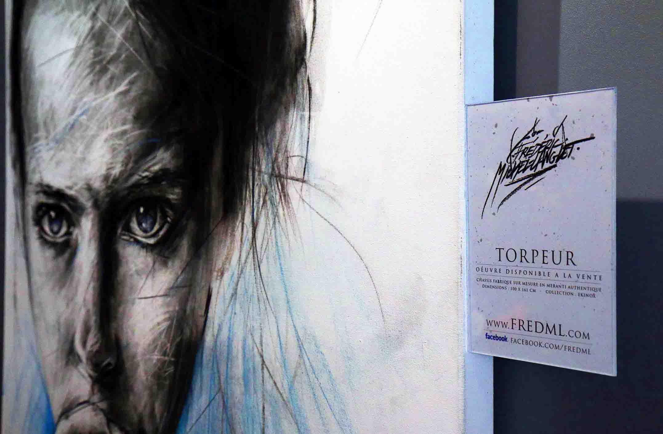 plaquette de présentation du portrait torpeur à l'expositions histoire 2 à chantilly
