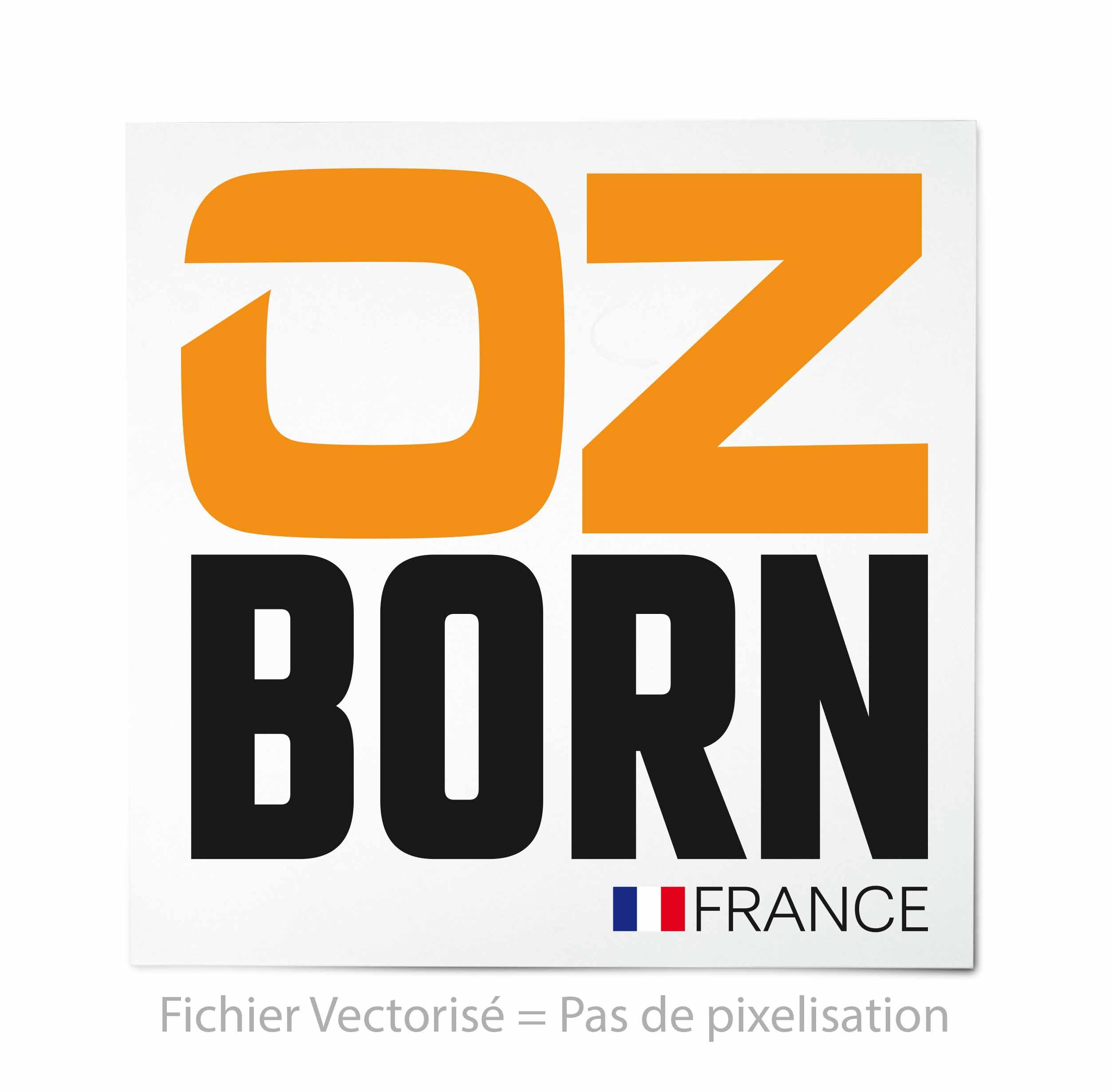exemple de logo vectorise